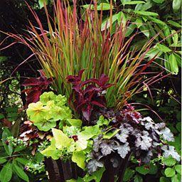 Pot plantings