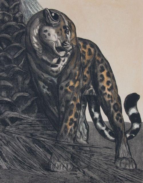 The Animals - Wikipedia