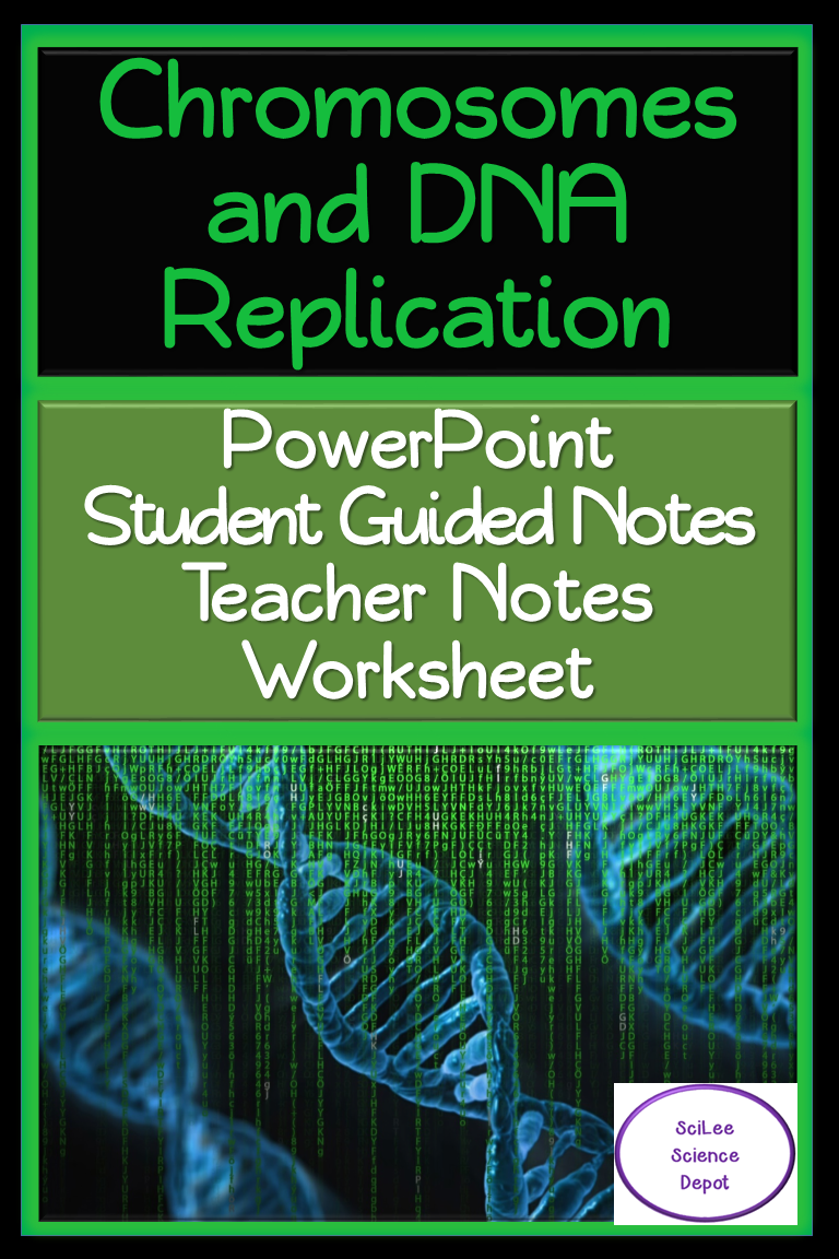Chromosome & DNA Replication PowerPoint, Student Guided