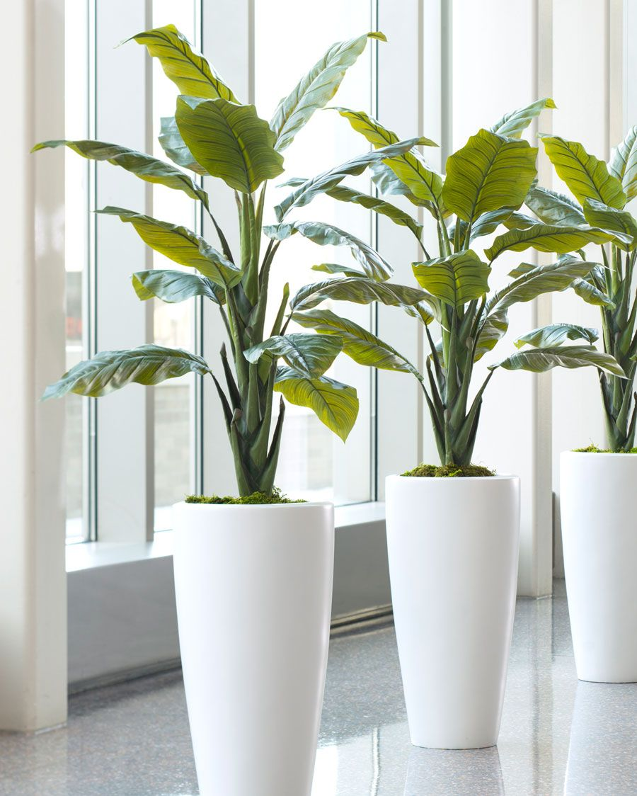 Shop high quality philodendron silk floor plant at for Green floor plant