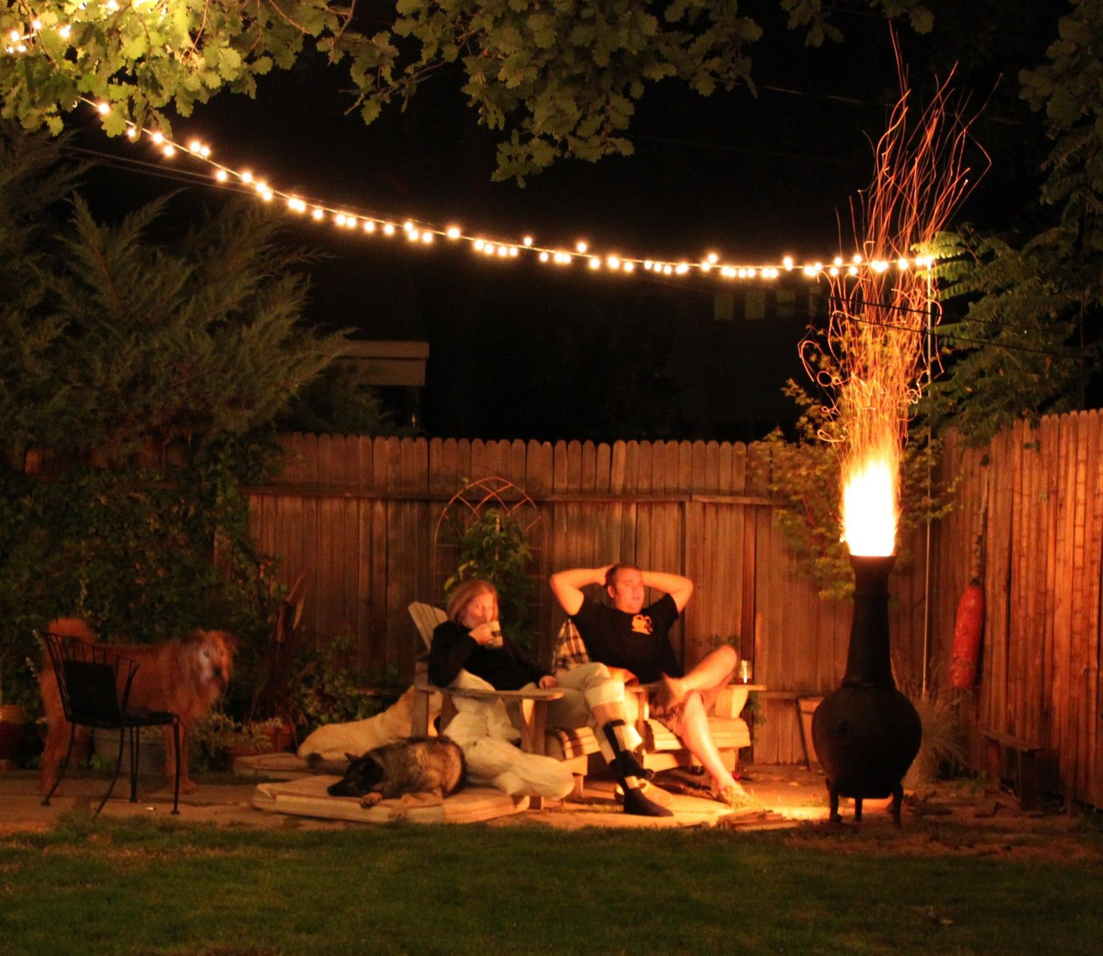 garden string lights u201d的图片搜索结果 garden lighting pinterest