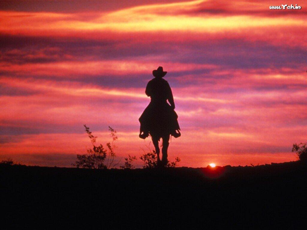 Beautiful Wallpaper Horse Sunrise - 9071ac326165bfc57bd8263074c3f6b4  Pic_834065.jpg