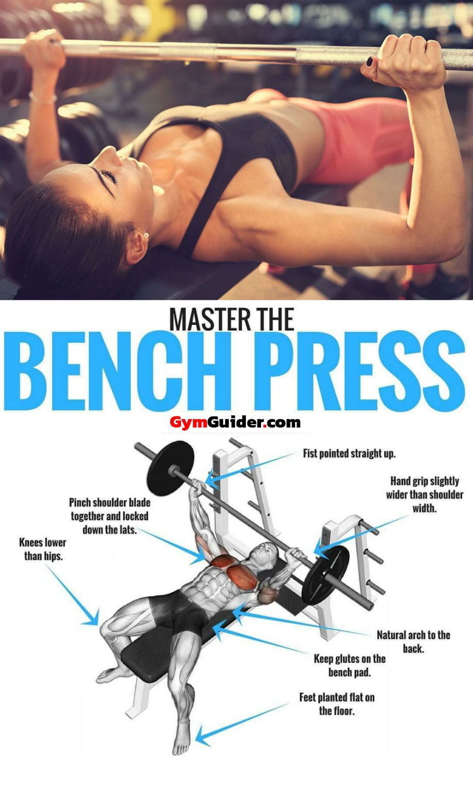 6 Technique Points To Increase Bench Press Weight Gymguider Com Bench Press Bench Press Workout Bench Press Weights