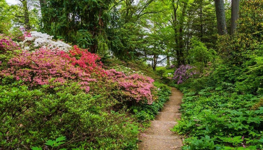 90730d7ba6977cf7ad9170e4e85916ff - Best Time To Visit Munsinger Gardens