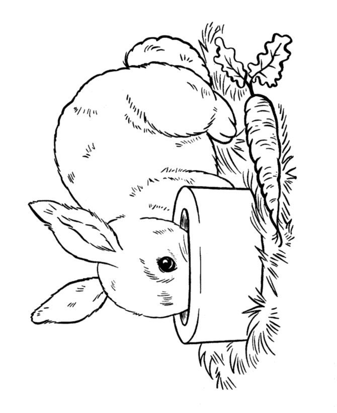 Easter Bunny Coloring Page In 2020 Easter Bunny Colouring