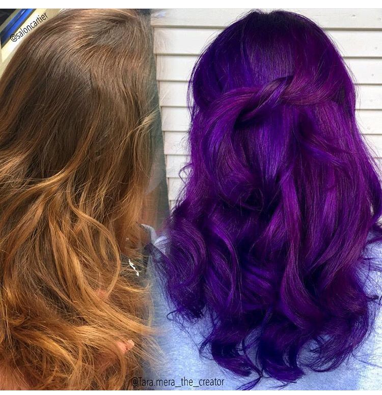 pravana violet and wild orchid creative haircolors