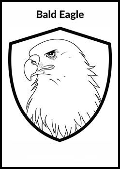 Free 4th Of July Coloring Page | Bald Eagle Coloring Page