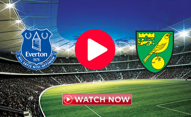 Everton Vs Norwich City Live 23 11 2019 Norwich City Everton Norwich