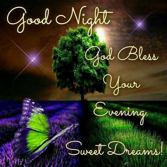 Goodnight God Bless Your Evening Sweet Dreams Good Night Good