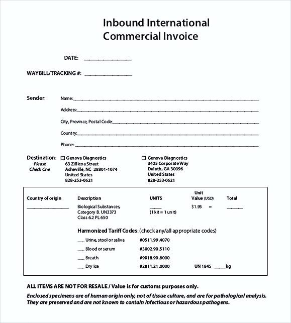 International Commercial Invoice Templates Pdf  Commercial