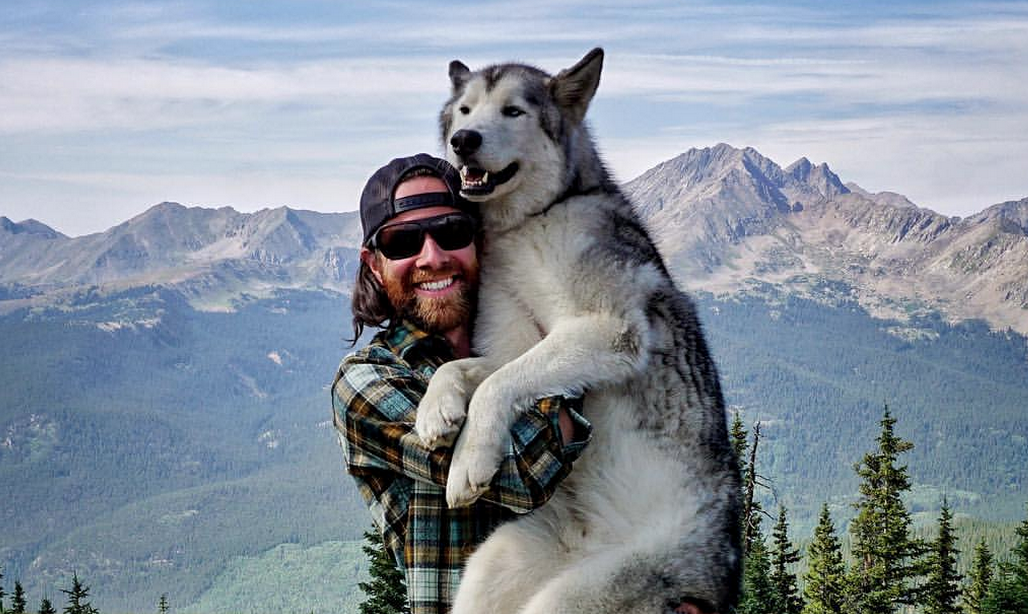 This Man's Wolf Hybrid Rarely Sets A Paw Indoors (The