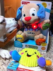 Fisher Price Laugh Learn Love To Play Puppy For Less Than 500 At