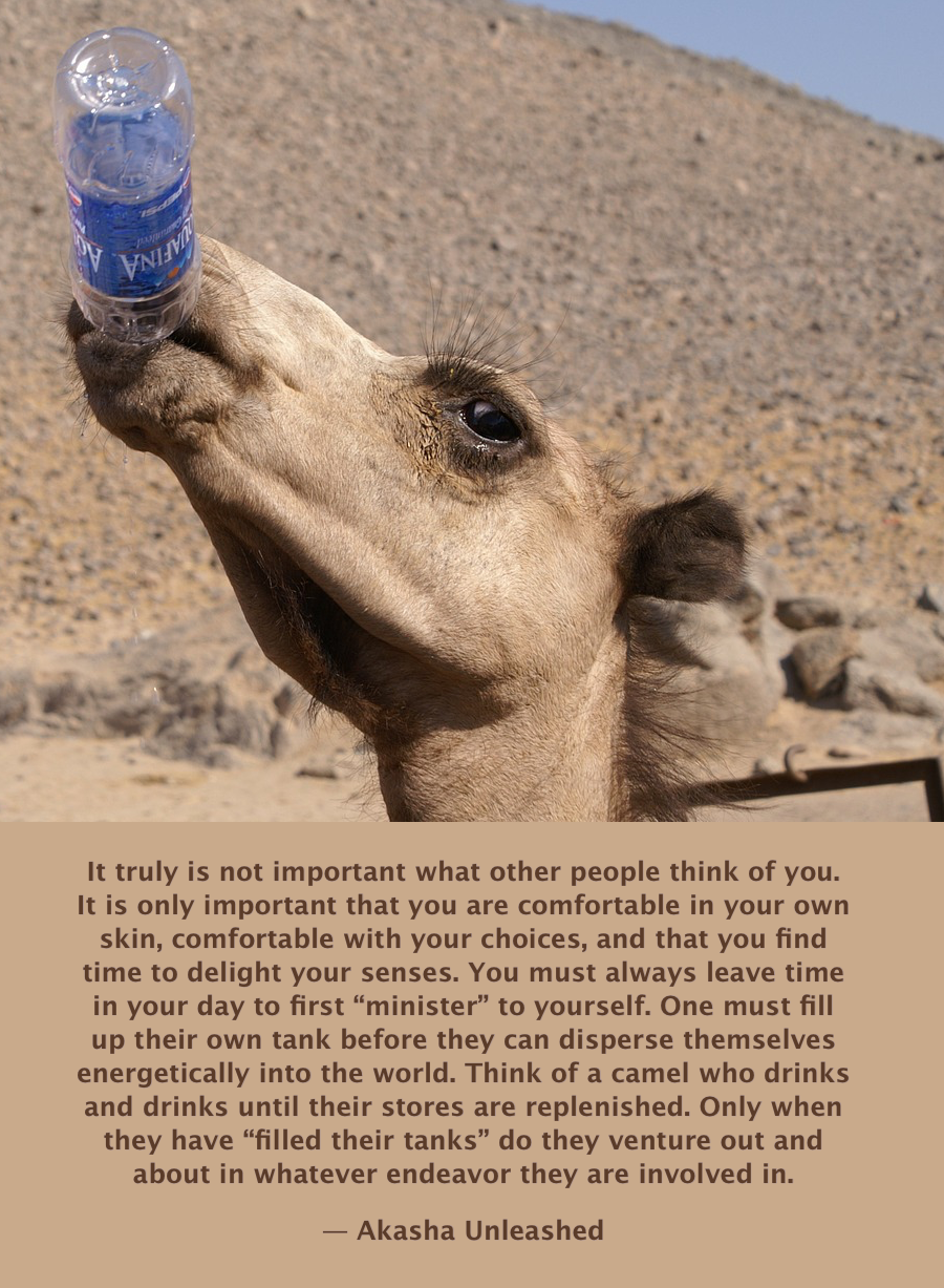 Be like a camel. Fill up your own tank before seeing to the needs of others. Self Esteem, Akashic Wisdom, Inspirational Quotes