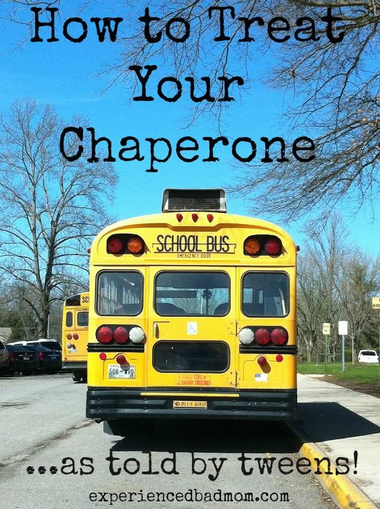 How to Treat Your Chaperone School bus safety, Bus