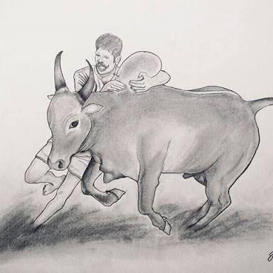 Image Result For Jallikattu Drawing Kaalai In 2019 Pinterest
