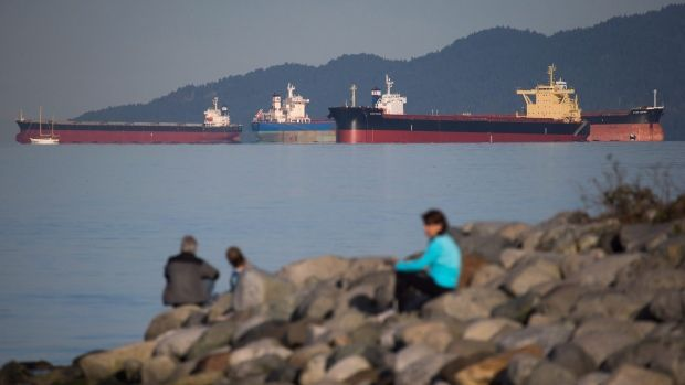 Vancouver oil spill: Aquarium scientists testing water, sediment samples
