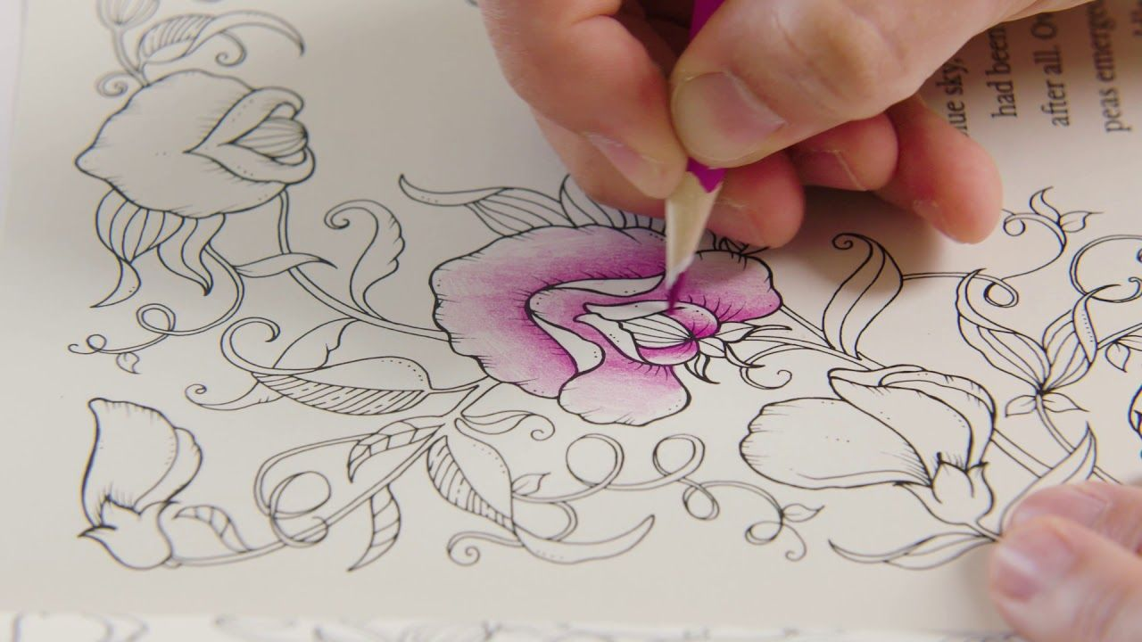 Flower Flower Drawing Colour Video