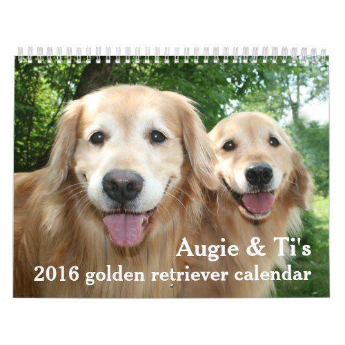 Augie And Ti S 2016 Golden Retriever Dog Calendar Zazzle Com
