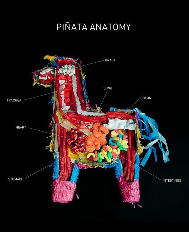 Anatomy of a Pinata!