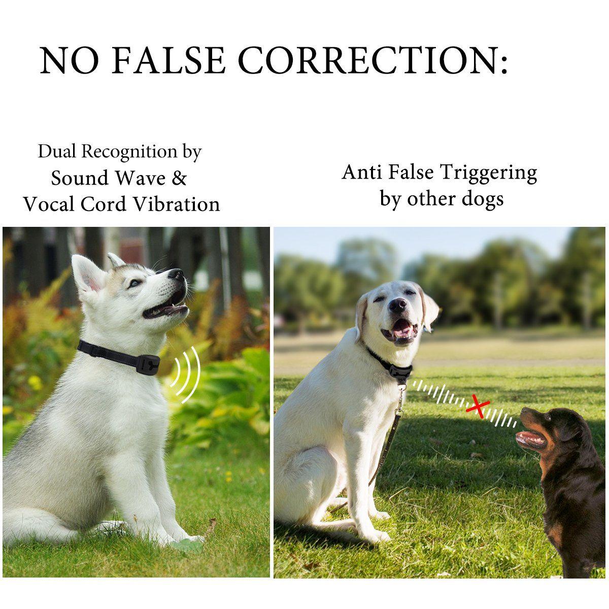 Pin On Dog Training Aids