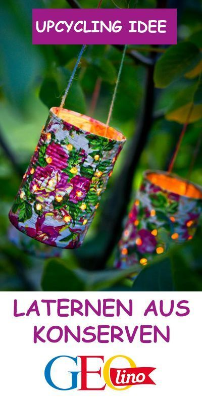 Photo of Canned lanterns