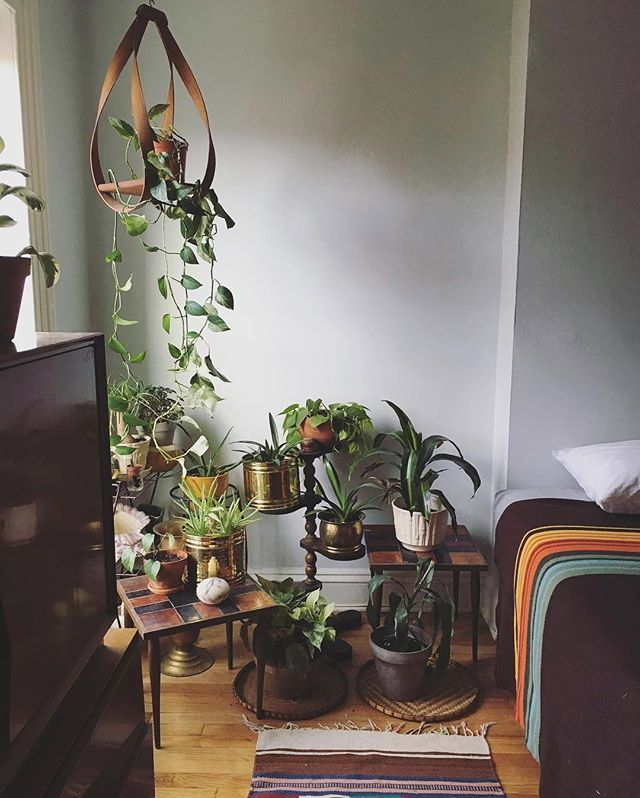 This cozy, plant-filled bedroom via @ mamakeavintage in the #interiorrewilding feed is just so inviting. Always more plants = yes please!  We feature a new photo from #interiorrewilding each week! Share/tag yours for a chance to be featured.