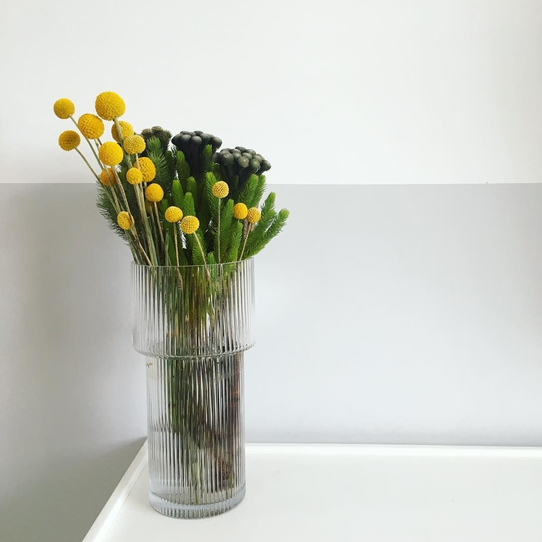 Craspedia Billybuttons Hm Home Mustard Yellow Vase Still Life Corners Of My Home Interior Styling Styling Th Home Floral Arrangements Yellow Vase Dried Flowers