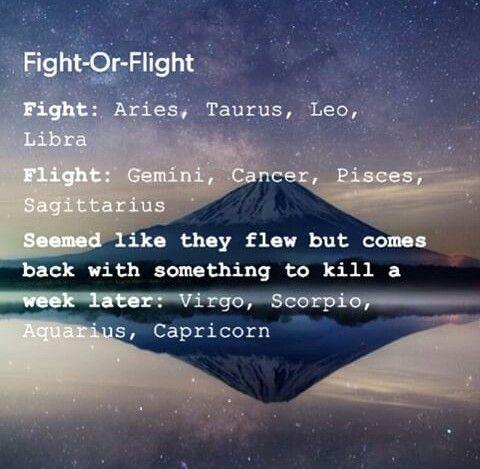 Fight or Flight | Zodiac Signs (Scorpio) & Myers-Briggs
