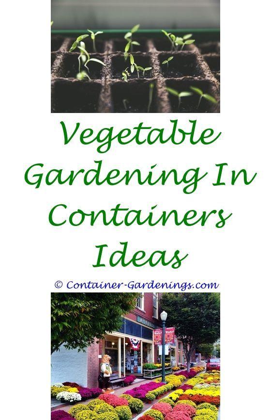 Garden Design For Small Gardens | Simple landscaping ideas, Organic ...