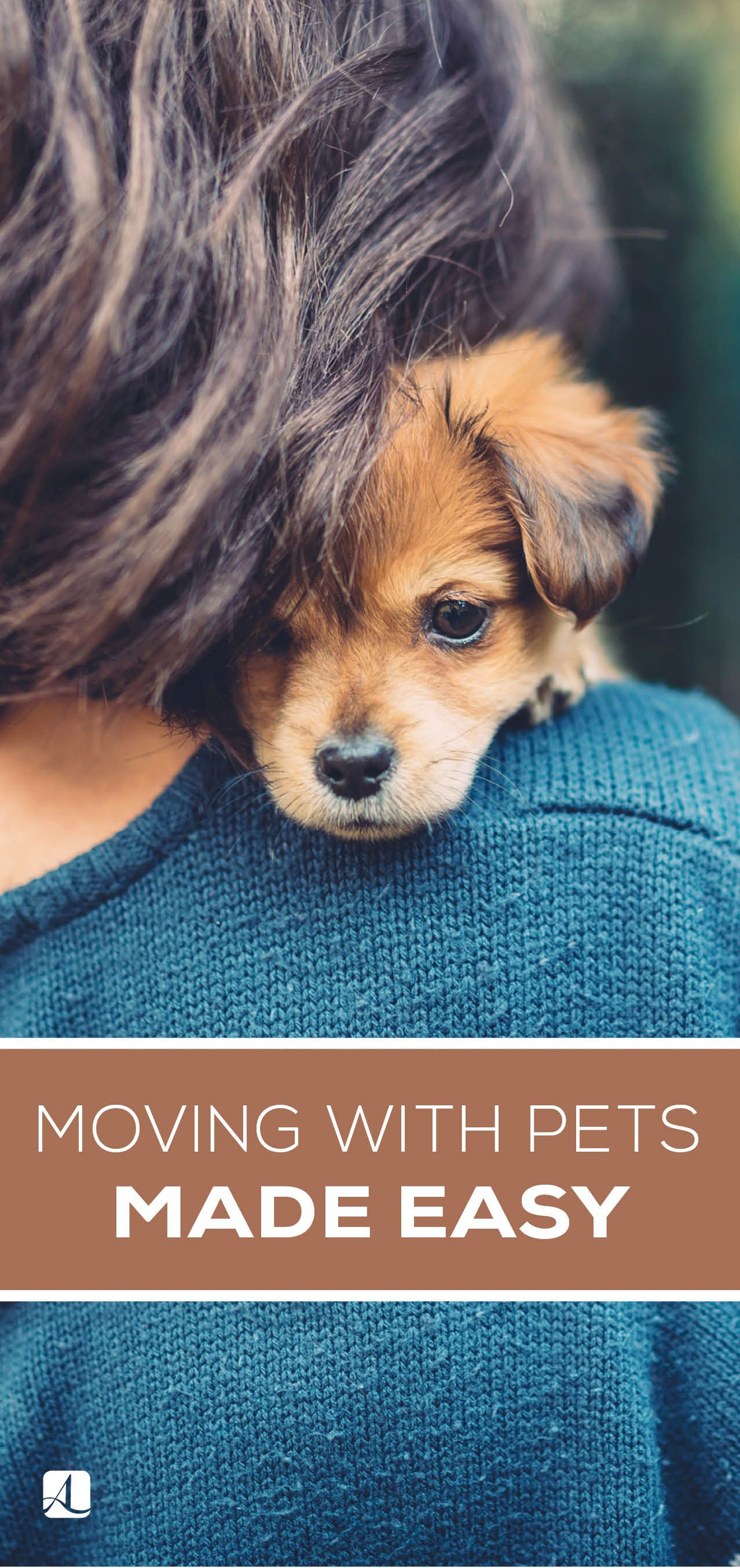 Don T Miss These 7 Tips For Moving With Pets Pets Pets Moving To Denver Animal Facts