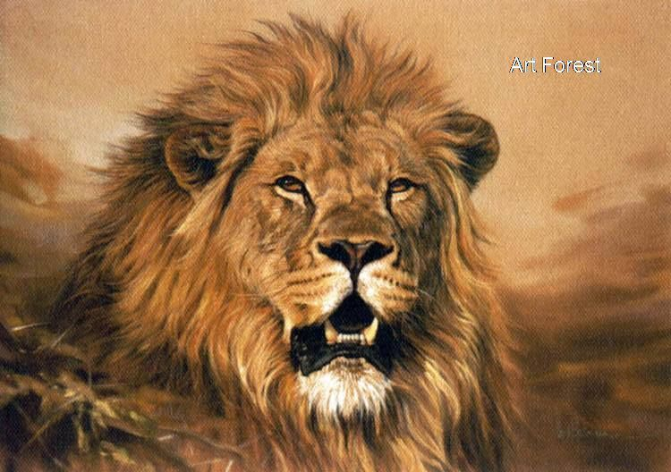 Lion Oil Paintings | af an04052 lion oil painting 06 oil ...