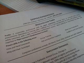 Expert resume write profile