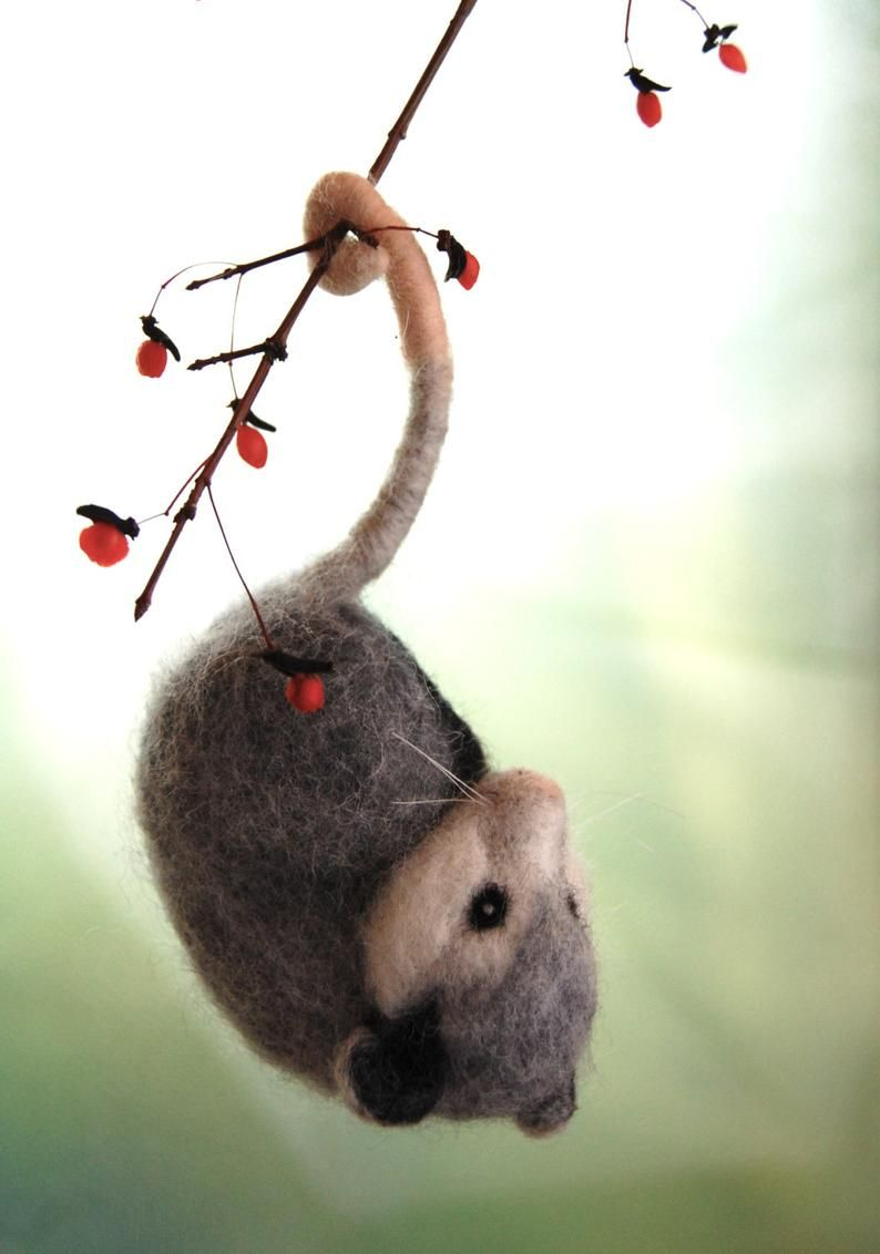 Needle Felted Opossum. Needle Felted Animals. Opossums. Needle Felted Animal. Possums. Needle Felt Opossum Ornament. Needle Felted Possum #needlefeltedanimals