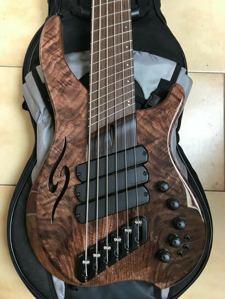 Pin by Nic Slager on GUITARS in 2020 Custom bass guitar