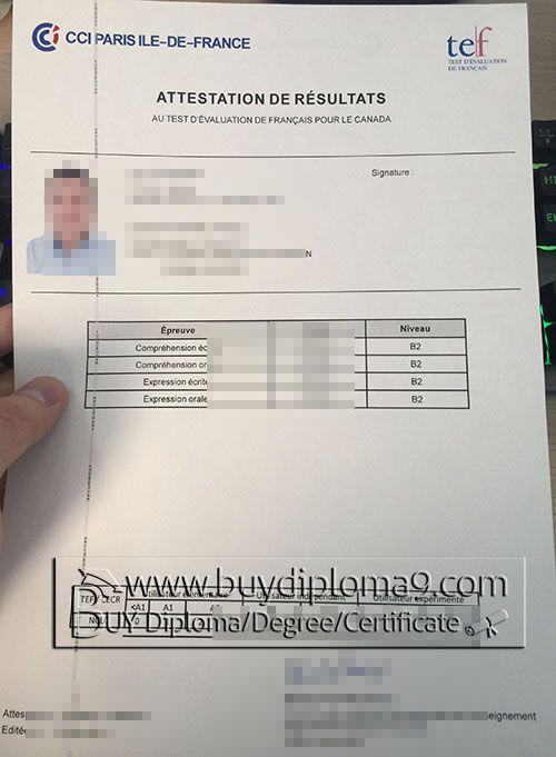 cci paris ile de certificate buy diploma buy college  cci paris ile de certificate buy diploma buy college diploma buy