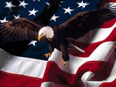 Http Google Com Pgtnetus American Flag Eagle American Flag