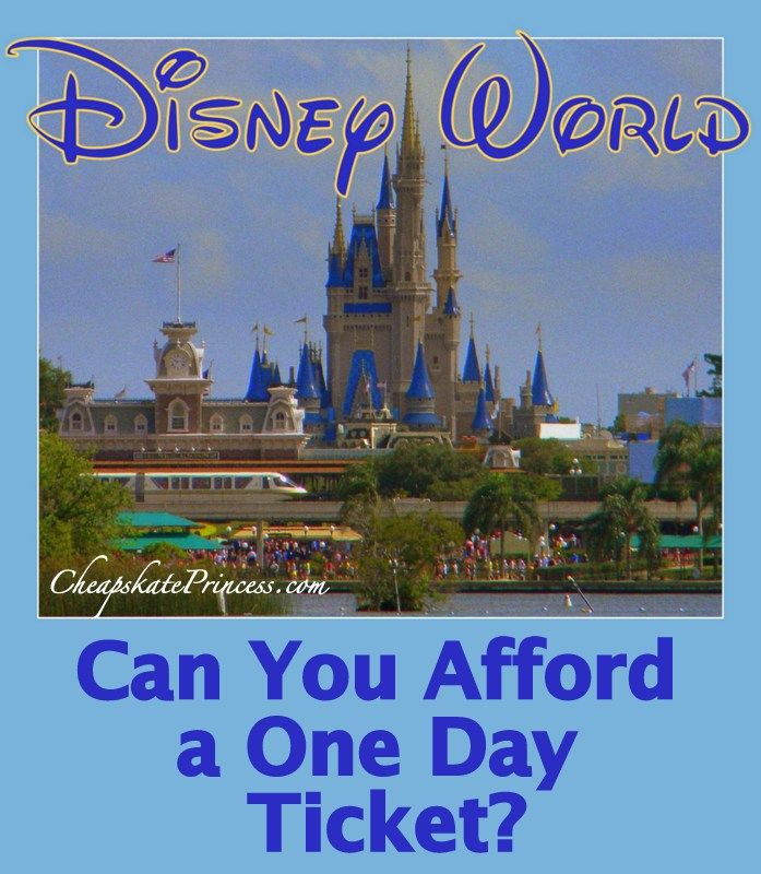 Picture of a disney world tickets cheapest 1 day