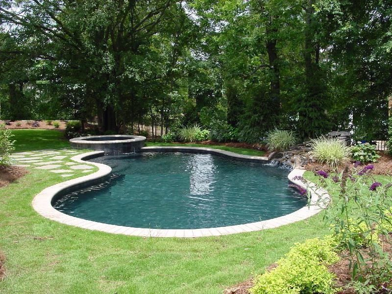 Concrete, Freeform Pool - Anthony and Sylvan will be in my yard ...