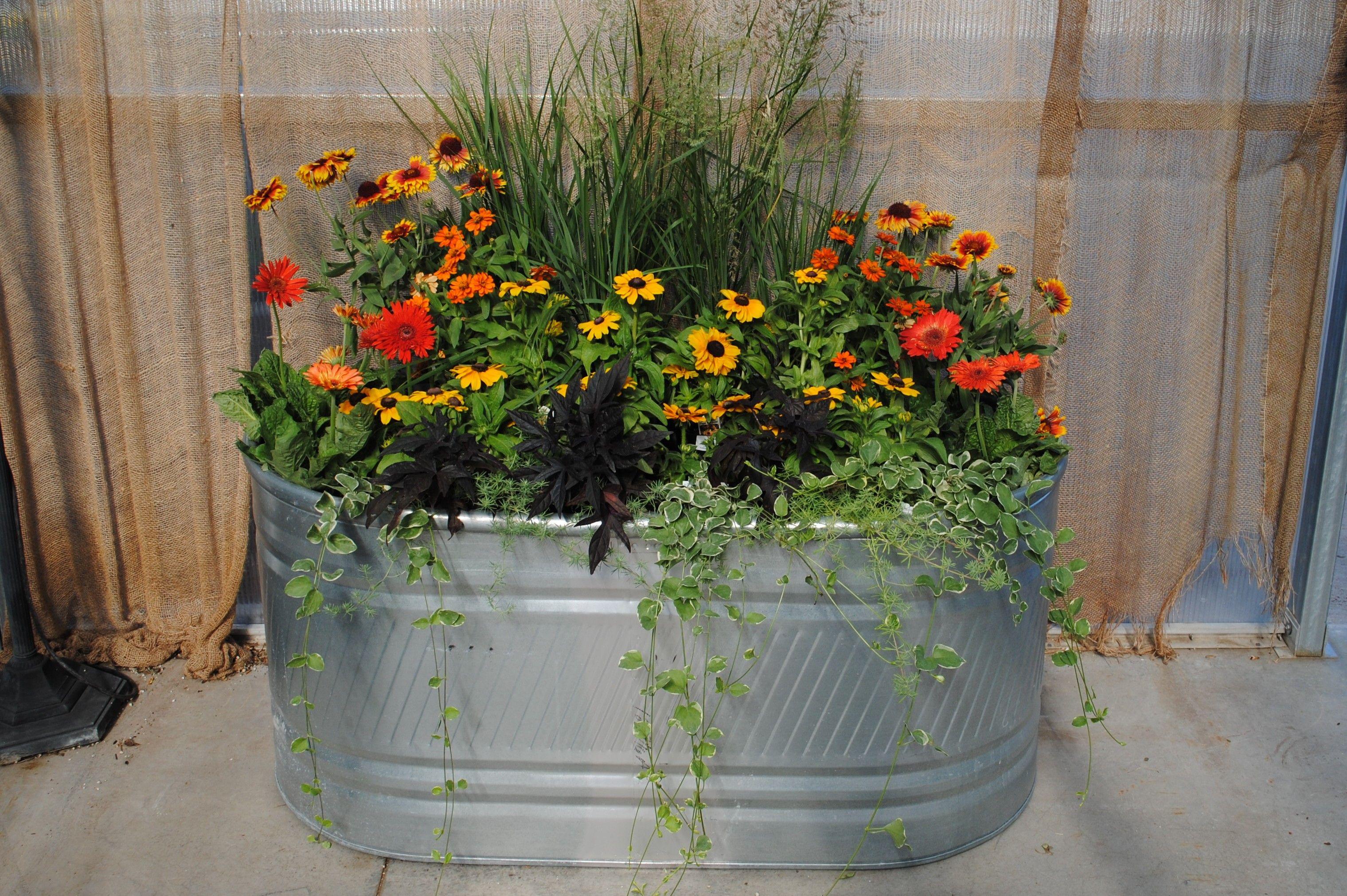 Create a beautiful stock tank planter stock tank