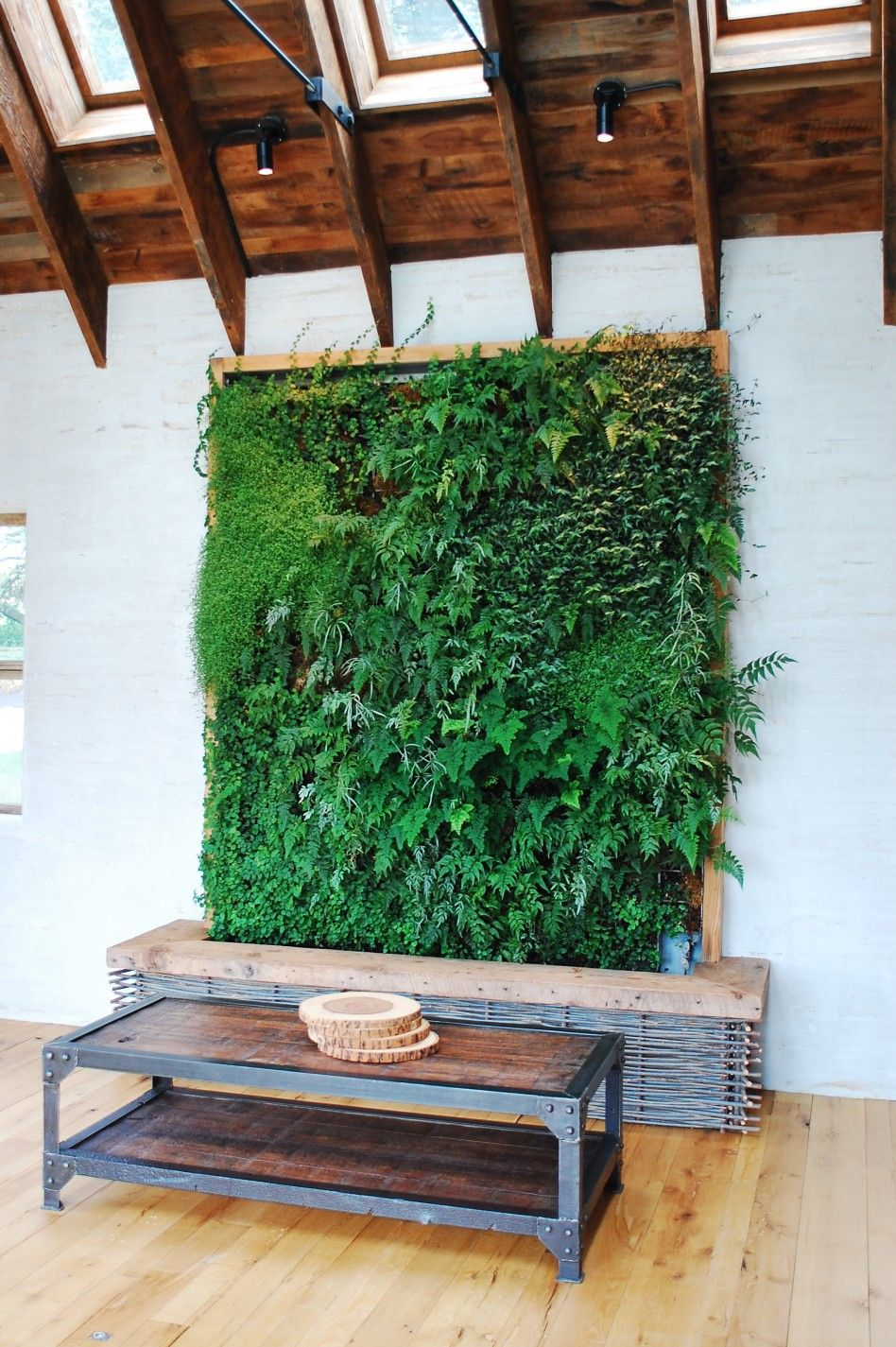 Fascinating Green Theme Living Room Decorating Ideas Decoration Idea Fantastic Plant At Wall