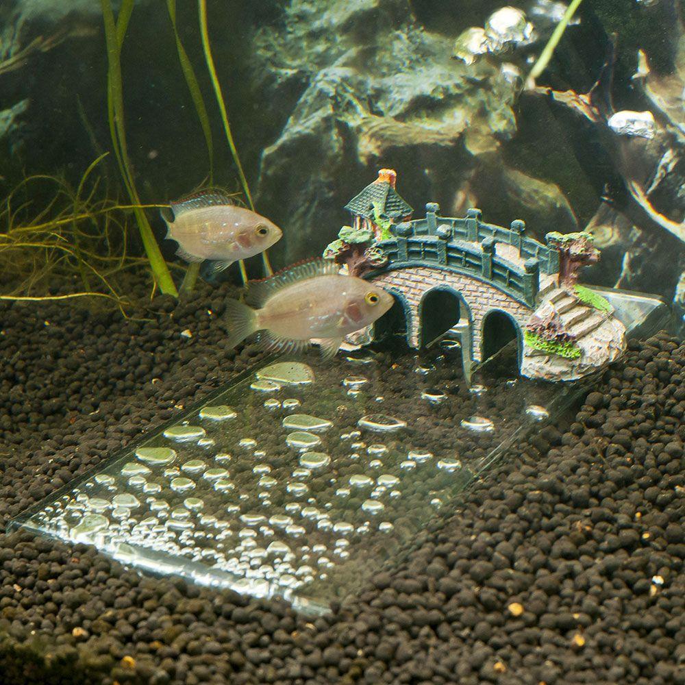 Underwater Decoration Ideas