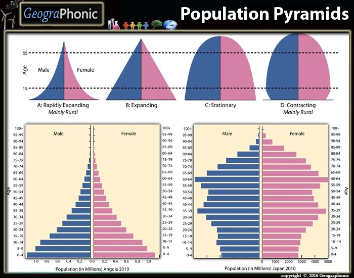 This Is A Quiz Called Population Pyramids Matching Game And Was Created By Member Geographonic Ap Human Geography Pyramids Teaching Geography