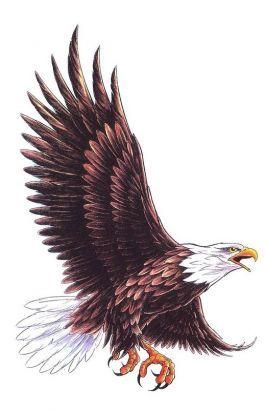 Flying Eagle Tattoo Design | Tat tat tat it up or pierce it up ...