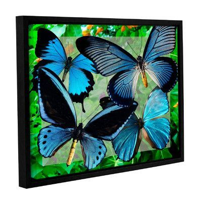 "World Menagerie Blue Butterflies Framed Graphic Art Size: 18"" H x 24"" W"