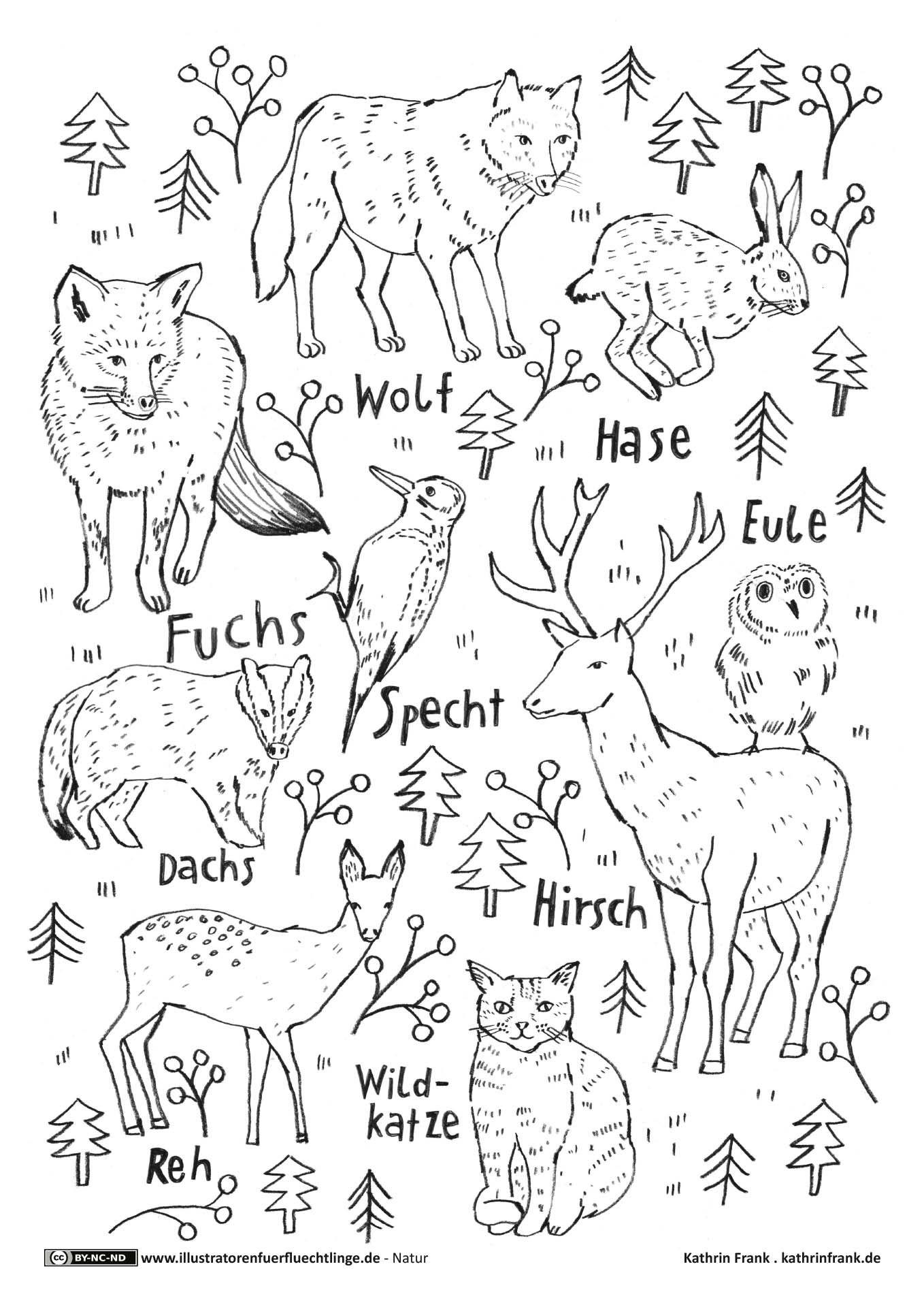 Ausmalbilder Herbst Waldspaziergang : Ausmalbild Oder Abpausen F R Kinder Natur Waldtiere Wood