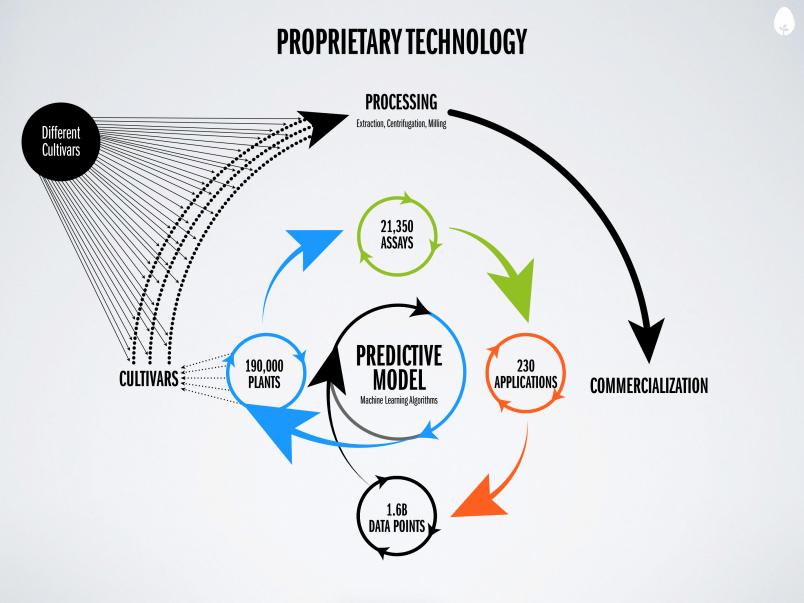 Big Data Based Food Startup Hampton Creek Raises 90m Food Startup The Hamptons Data