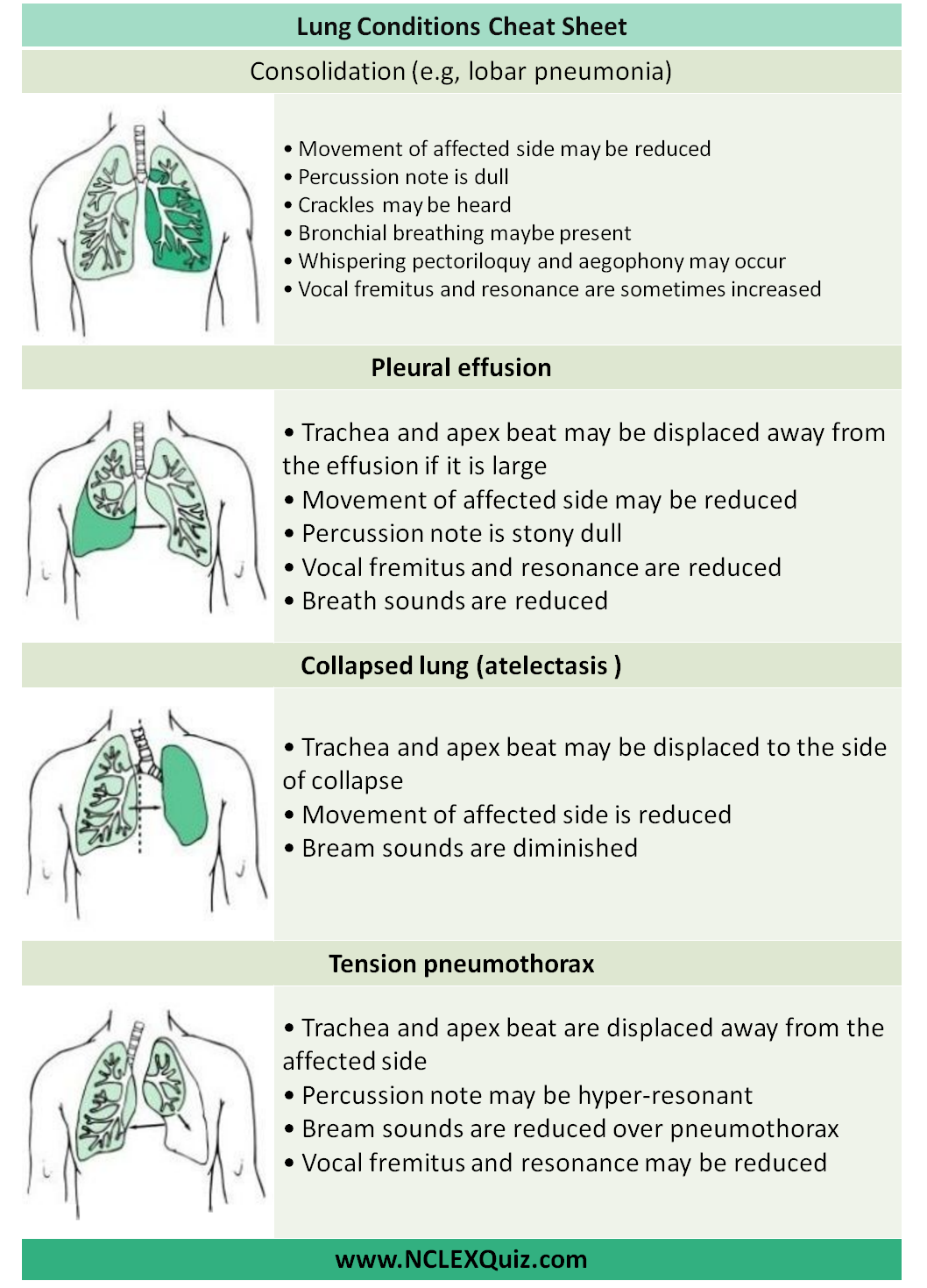 Examination of Respiratory System Cheat Sheet | Nursing School Study