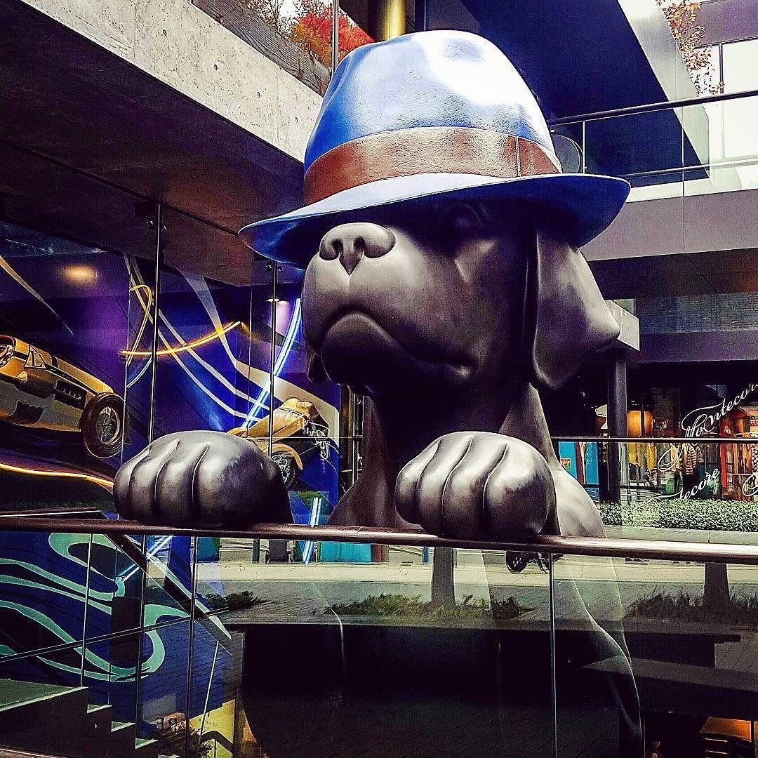 Dog in fedora in Itaewon #sculpture #art #dog #puppy #itaewon #hat #seoul #southkorea #korea #asiatravel #nomsandramblestravels #nomsandrambles #instapassport #travelgram #travel #travelasia #instatravel #travelphotography #instadaily #igdaily #instagood