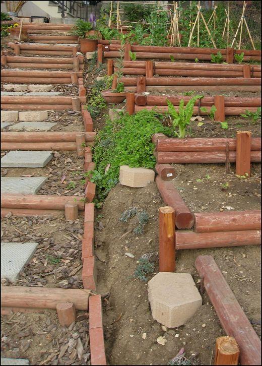 Terraced hillside vegetable garden i think i 39 ve found the for Garden design hillside