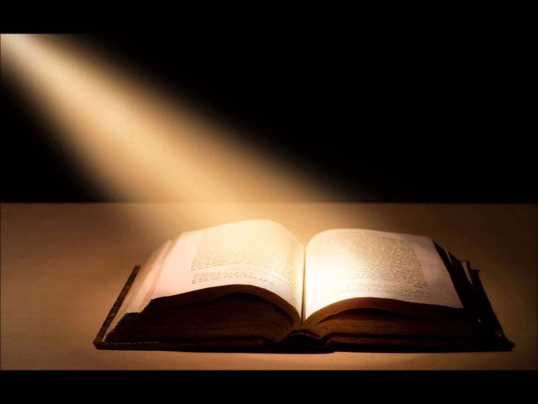 leviticus numbers and deuteronomy children u0027s bible stories